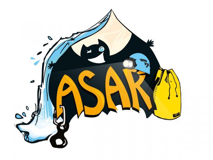 logo ASAR image seule