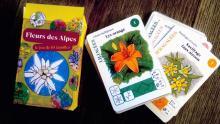 maquette du jeu de cartes fleurs des alpes