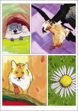 Carte postale représentant une marmotte, un gypaète barbu, un renard et une Carline acaule