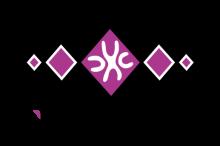 logo NoMan's Raid by jugraphics