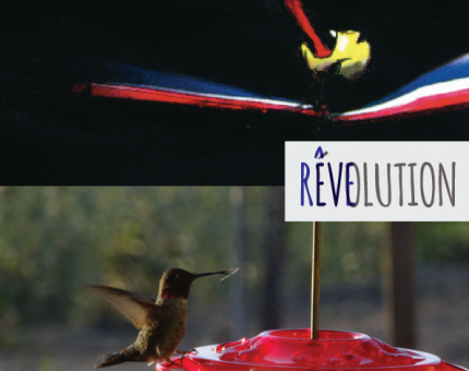 reve-evolution-jugraphics-03