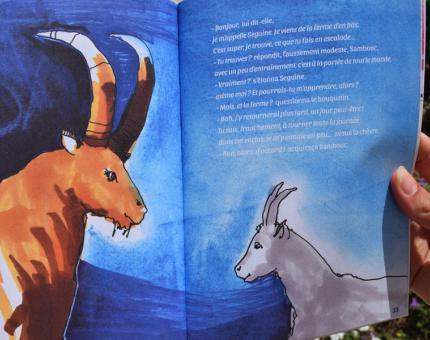 Illustration representing Sambouc et Seguine.