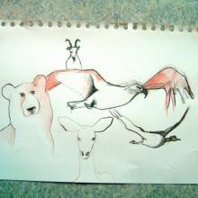 croquis d'animaux à la craie sanguine