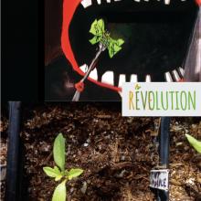 reve-evolution-jugraphics-02